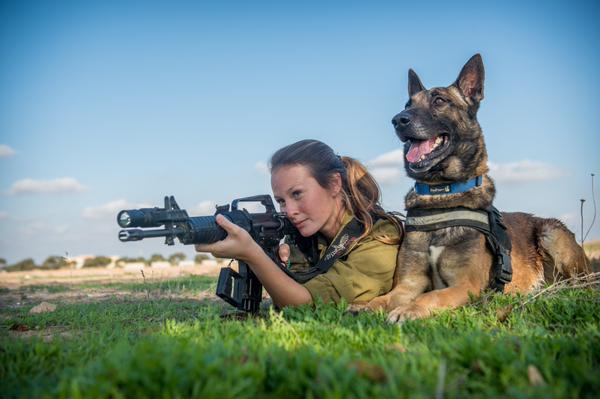 IDF-Siegerbild2014