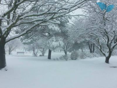 SchneeJerusalem14