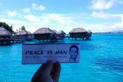 peaceyaman03