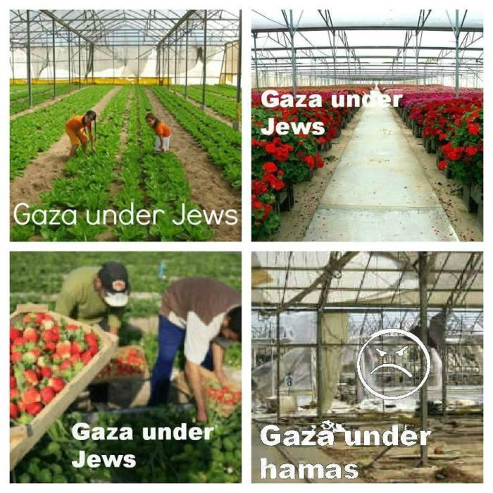 Gaza_Juden-Hamas
