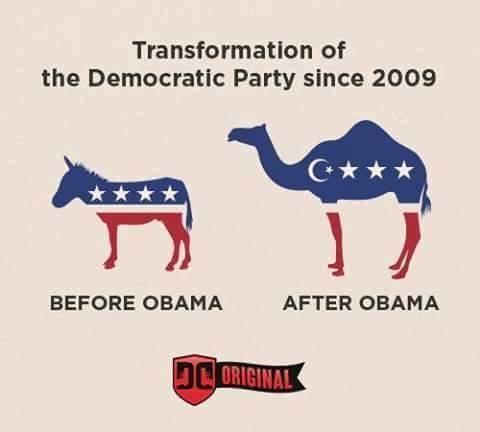 Obama_DemokratischePartei-Entw