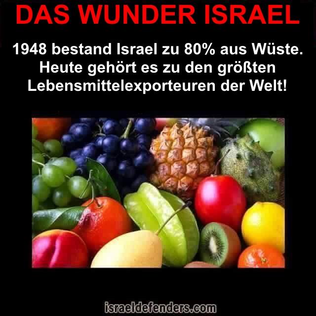 Wüste-Lebensmittel-Export