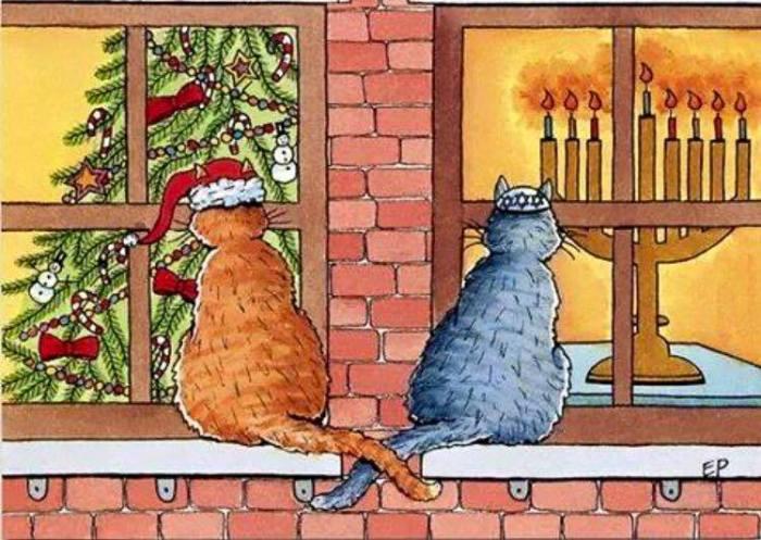 katzen-weihnachten-hanukka