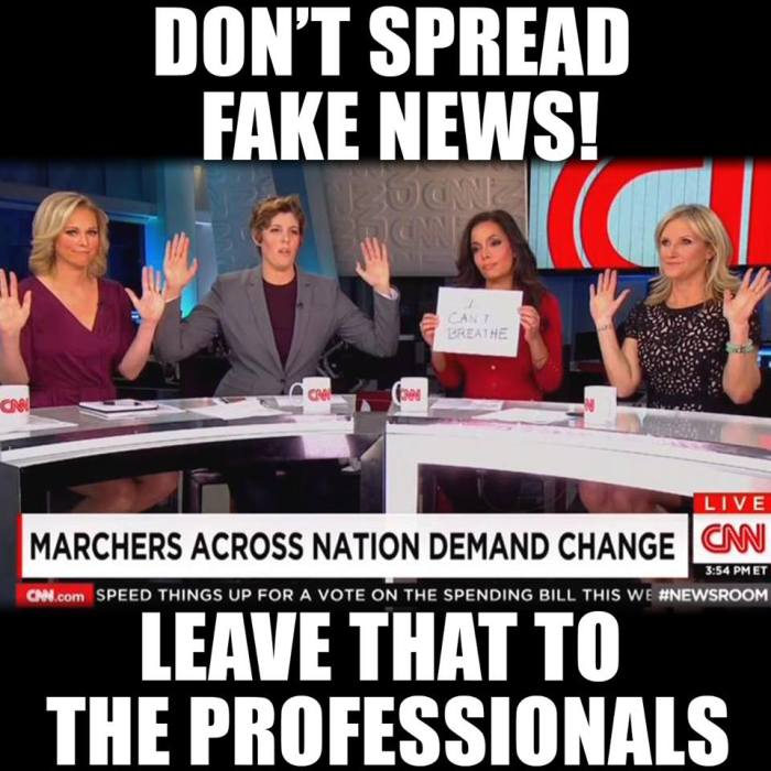 obama_fakenews-media-professionals