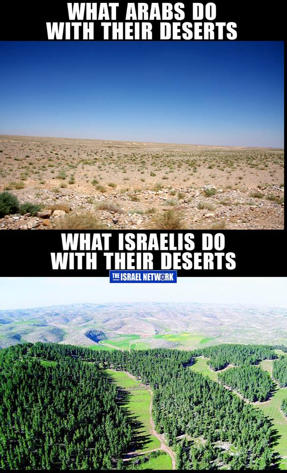 desert-arabs-jews