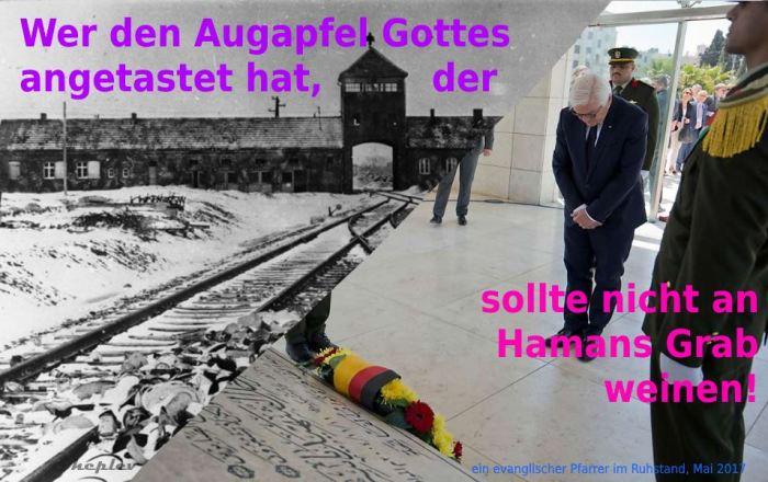 Sehr geehrter Herr Steinmeier (Quelle: heplev.wordpress.com)